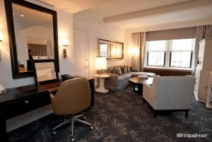 deluxe-suite-surrey-hotel-v574597