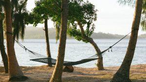 003290-15-Grand-hammock-Turtle-Island